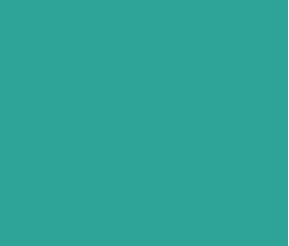29ANOS_ROP